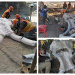 hallan-restos-de-mamuts-en-santa-lucia