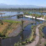 conoce-mas-de-la-rehabilitacion-del-parque-ecologico-xochimilco