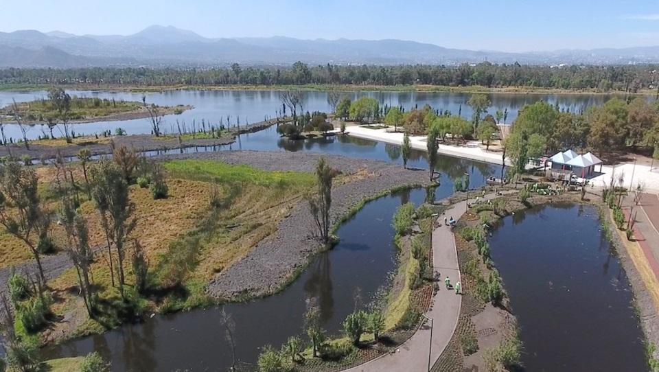 Conoce más de la rehabilitación del Parque Ecológico Xochimilco