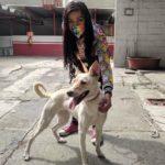echale-una-ayuda-perrona-al-centro-canino-azcapotzalco