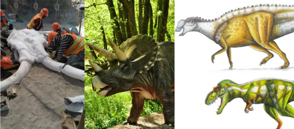 Chilango Hubo Dinosaurios En La Cdmx Huellas Tipos Y Fosiles Los fósiles de dinosaurio descubiertos en méxico tienen una antigüedad que va de 199.6 millones de en cambio la mayoría de fósiles de dinosaurio mexicanos datan del cretácico tardío, con una. chilango hubo dinosaurios en la cdmx
