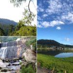 adios-smog-5-bosques-y-reservas-naturales-en-cdmx