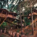 cabanas-kali-tree-escapate-a-estas-casas-en-los-arboles-%f0%9f%8c%b2
