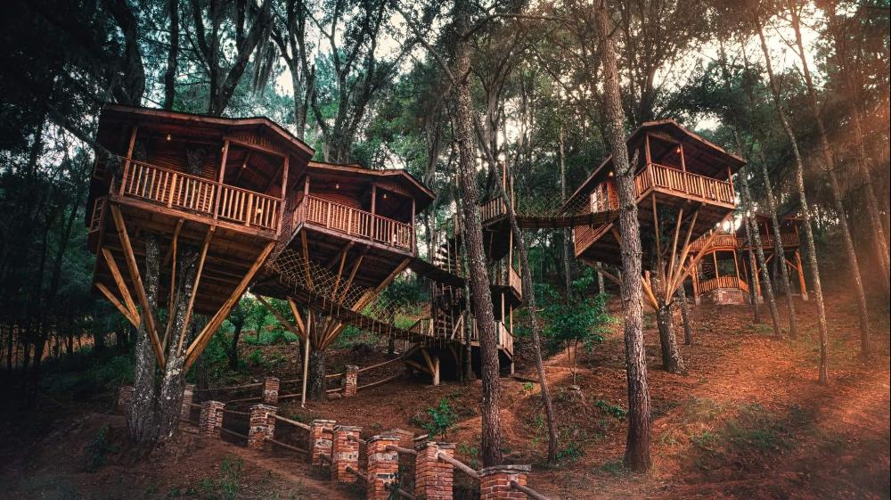 Cabañas Kali-Tree: el hotel estilo casa en el árbol en Puebla🌲