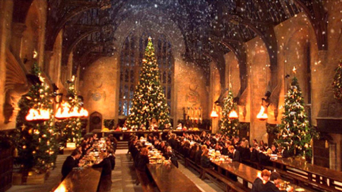 隆Tendremos Navidad M谩gica de Harry Potter! 馃巹鉂勶笍馃