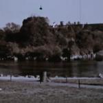 ya-llovio-asi-lucian-estos-lugares-de-cdmx-en-los-50-videos