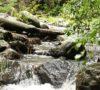 lagos-cascadas-y-rios-bonitos-en-la-cdmx-%f0%9f%9a%a3%f0%9f%8f%bb%e2%80%8d%e2%99%80%ef%b8%8f