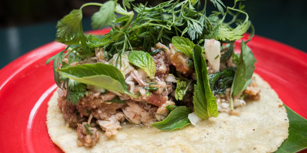 Cariñito Tacos: puros taquitos de pancita de cerdo 🌮