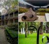 jardines-y-patios-frescos-muy-bonitos-en-8-museos-de-la-cdmx