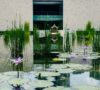 jardines-bonitos-de-la-cdmx-para-visitar-en-verano-%f0%9f%8c%be