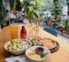 cafe-pacifico-buffet-de-chilaquiles-amor-queer-y-plantitas-%f0%9f%8c%88