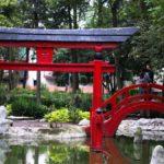 ruta-de-lugares-para-sentirte-en-japon-en-la-cdmx-%f0%9f%8f%af%f0%9f%8e%8c
