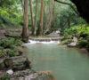 cascadas-rios-y-paisajes-de-ensueno-en-pinal-de-amoles-escapate