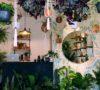 10-lugares-para-comprar-plantas-en-la-cdmx-%f0%9f%8c%b1