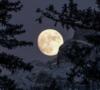 5-miradores-en-cdmx-para-ver-lunas-espectaculares-%e2%9c%a8