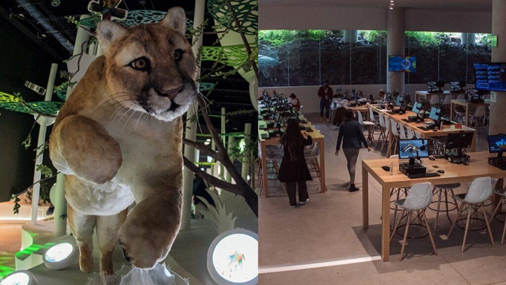 goooya-inauguran-pabellon-nacional-de-la-biodiversidad